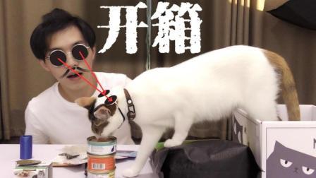 (开箱猫盒)第一次偷偷吃了点猫罐头, 感觉···