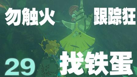 塞尔达传说 荒野之息★#29精灵的三个试炼.一个比一个奇葩