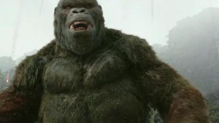 最新电影《金刚》: 猩猩大战海上蛟龙, 人类单挑霸王龙
