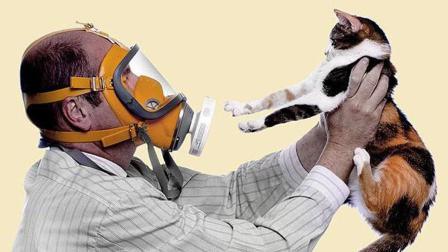 宠物过敏怎么办 协和医生给你指条明路 72