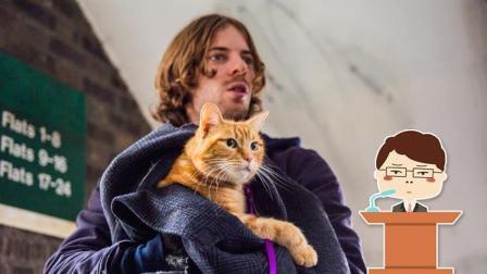 哎呀我去: 5分钟看完喵星人和它的铲屎官的故事《流浪猫鲍勃》