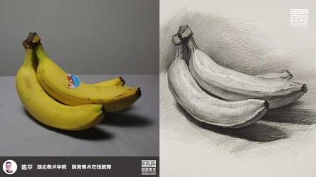 「国君美术」 素描静物_单体_香蕉_陈平