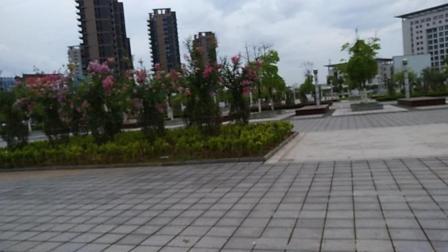 抚州市崇仁县属于哪个市