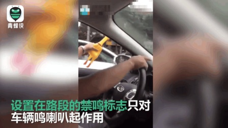 """济南网友恶搞汽车禁鸣令: 用""""尖叫鸡"""""""