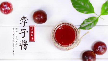 贝太厨房 2017 酸甜的李子酱 13