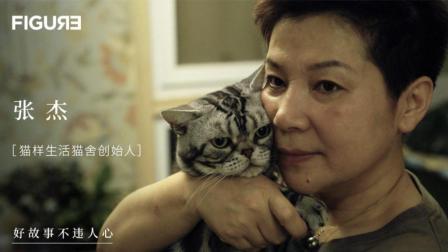 全国最牛猫咪繁育师 拥有世界排名第一的美短 她说只有猫懂她的虚荣