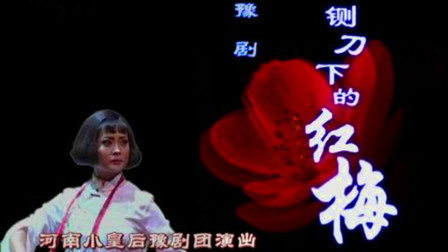 豫剧《铡刀下的红梅》王红丽 崔玉萍 盛红林
