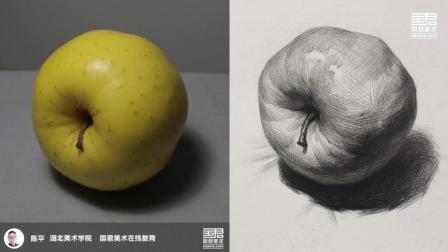 「国君美术」 素描静物_单体_黄苹果2_陈平