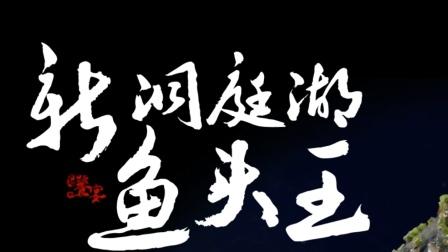 饕宴(四)阳显华:新洞庭湖鱼头王