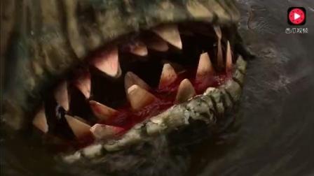 鲨鱼正在慢慢靠近, 几个小孩们还在水里游泳!
