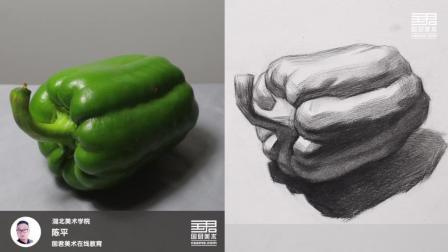 「国君美术」素描静物_单体_躺着的胖青椒_陈平