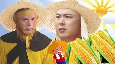 一风之音 2017:孙悟空种玉米赔光本钱 农村现在种地怎么就那么难 153