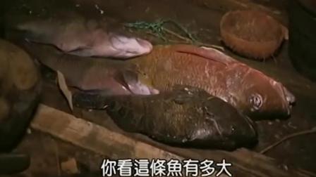 贝爷的孤岛求生: 钓鱼大神出手, 大家又有鱼吃了, 好开心!