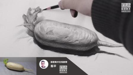 「国君美术」素描静物_单体_白萝卜_陈平