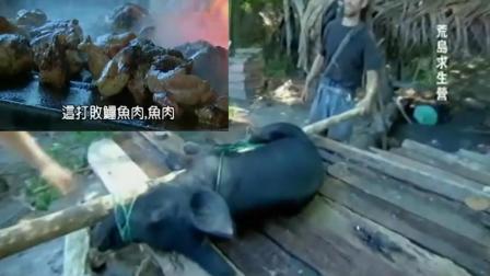 贝爷的孤岛求生: 抓到一头猪, 这顿是大家吃的最好的, 连猪鞭都不放过!