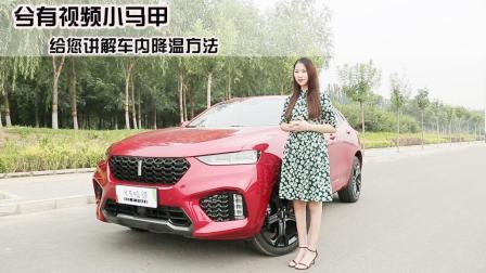汽车百科姐说: 小马甲给您讲解车内降温方法-兮有视频
