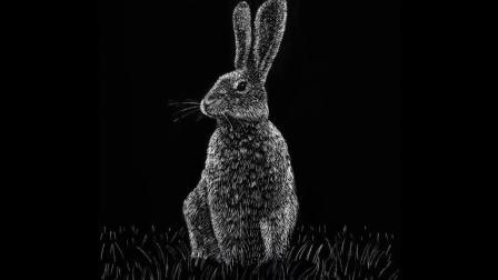 【绘笔万象】如何绘制逼真野兔