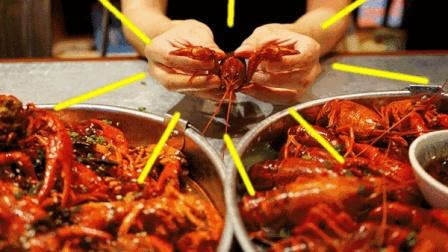 我们平时吃得到底有多脏? 小龙虾、葡萄干、鸭脖子