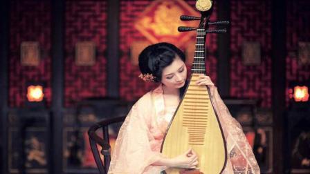 音乐大师林海琵琶曲《踏古》好听极了!