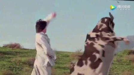 Veed分享__网易考拉海购 - 全球高品质奶粉篇