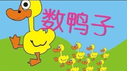 低幼儿歌 数鸭子 幼儿早教启蒙儿歌