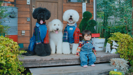 萌翻 1岁小女孩和3条狗狗 同睡同吃还穿同款 195