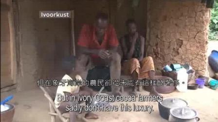 当种植可可豆的非洲农民 第一次尝到巧克力时的反应