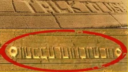 外星人确实存在, 麦田怪圈符号近日被专家