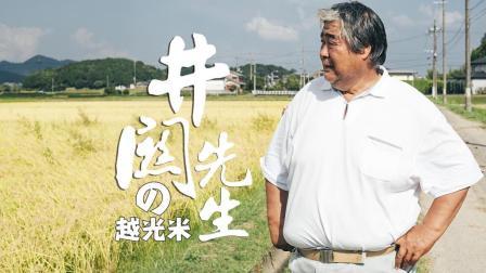 他在日本乡下种了30年的越光米  饭米了没