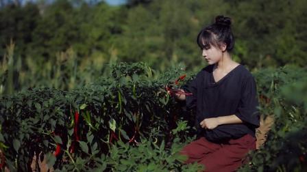 李子柒古香古食 第一季 第8集 解锁封印在食谱里的川菜之魂 08
