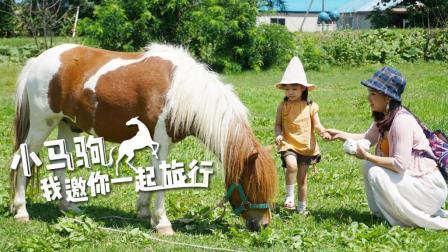 你见过扎丸子头的小马驹吗 88