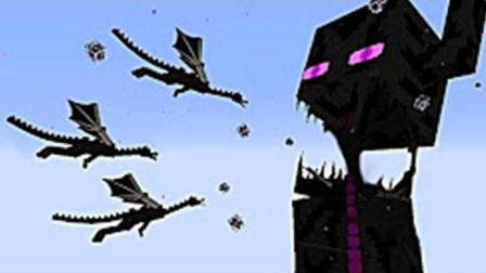 大海解说 我的世界Minecraft 大战不死凋零鸟人