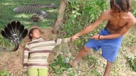 柬埔寨熊孩子捕蛇, 眼镜蛇太过凶猛, 它的牙就这样被拔掉了!