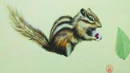 【艺达】彩铅超写实——松鼠