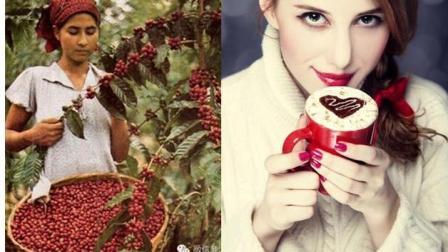 咖啡豆从树上摘下来, 到做成一杯咖啡全程视频记录, 值得收藏