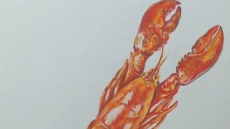 【艺达】彩铅超写实视频教程-小龙虾