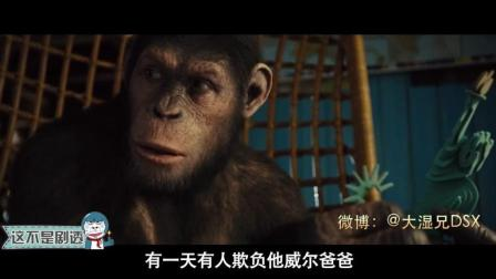 #大鱼FUN制造#《这不是剧透》147期: 猩猩会武术谁也挡不住