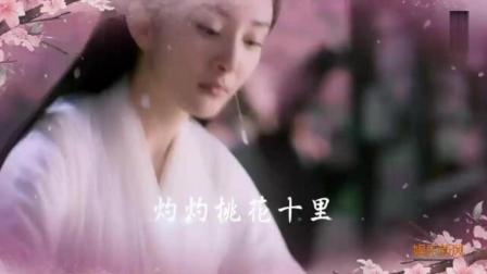 《三生三世十里桃花》台湾香港韩国柬埔寨预告片, 大幂幂这是要火遍全亚洲的节奏啊