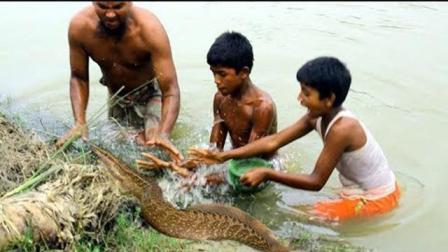 农村小哥抓黄鳝一夜成网红, 这抓黄鳝的技术是真的高!