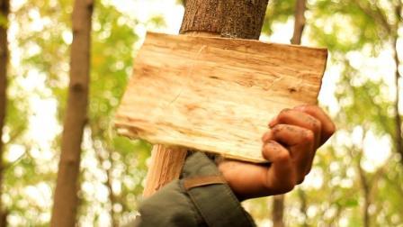 他从树上撕下一块树皮, 五分钟后大家终于恍然大悟
