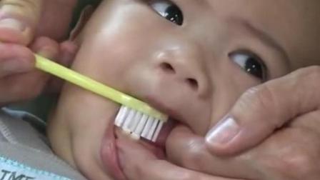 1-3岁宝宝刷牙的正确操作步骤, 新手父母们别弄错顺序!