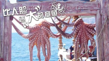比人脸还大的章鱼 400块1只 90