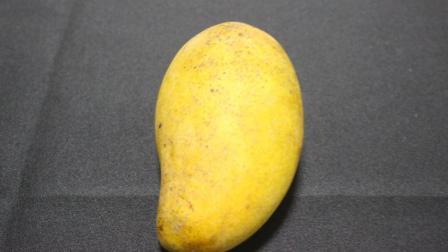 最完美的芒果切法, 果肉一点都没浪费