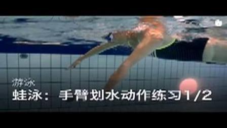 游泳教学视频 零基础教学游泳