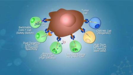 实体瘤细胞免疫治疗宣传片