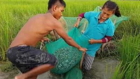 农村夫妻俩大清早收地笼, 拉出鱼笼, 顿时乐开花, 笼里全是鱼