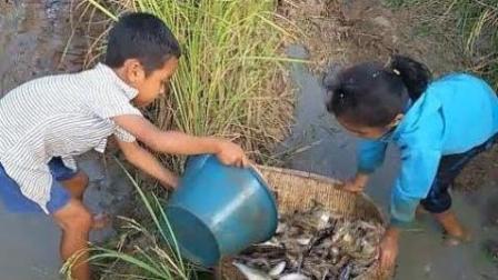 农村小孩如此纯朴, 看完都泪流了