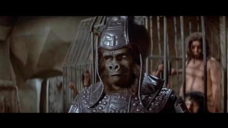 男子穿越到2000年后, 地球被猿猴占领, 人类被圈养命运悲惨