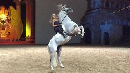 独家揭秘马秀《特洛伊》美女与名马的那些事儿