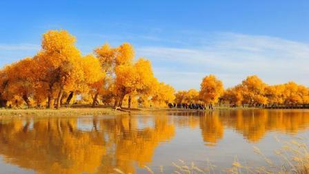错过10月又要再等一年, 中国最美秋色—额济纳胡杨林, 三千年等候只为等你的到来!